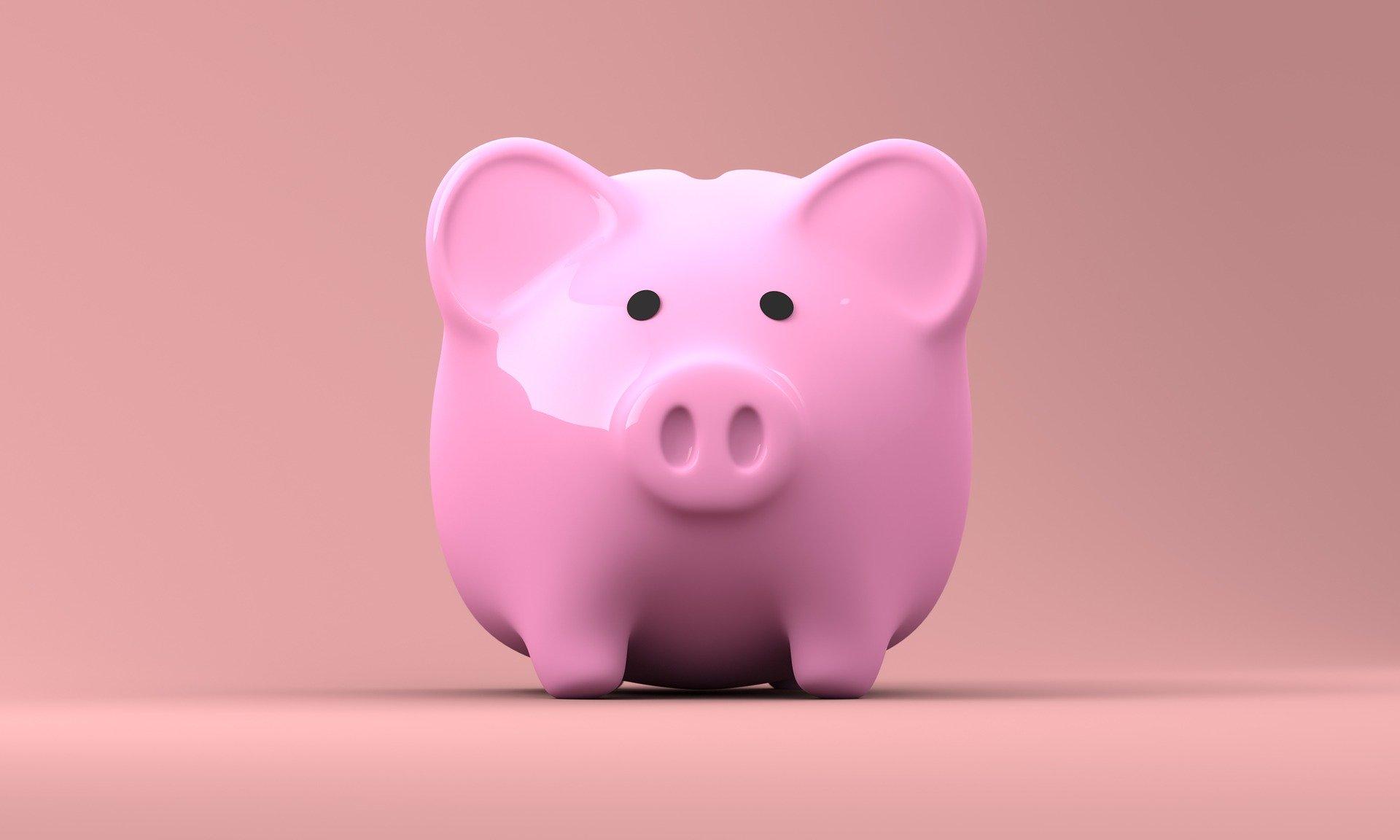 Geld verdienen met spaarprogramma